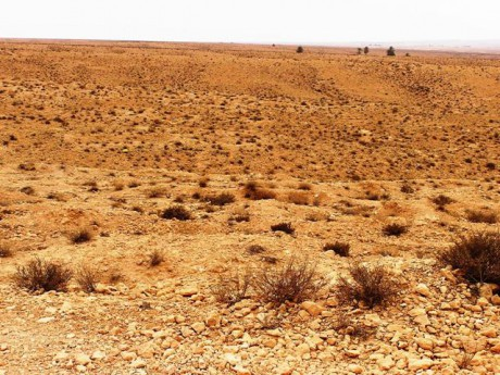 ouled-soltana--ghorfy--6-