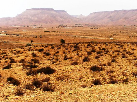 ouled-soltana--ghorfy--7-